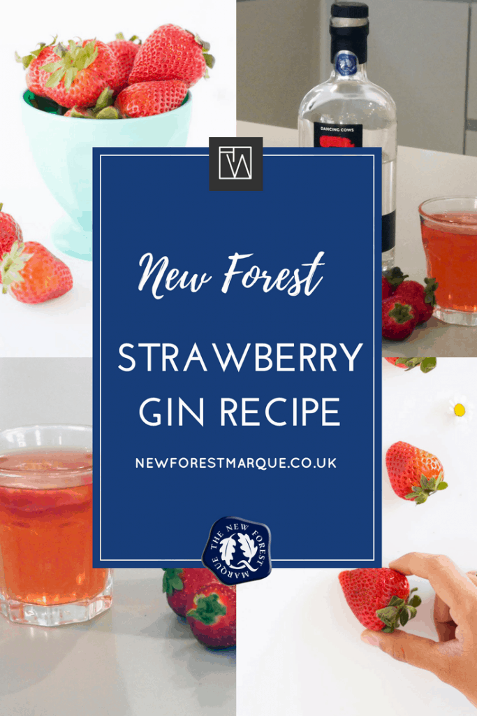 New Forest Strawberry Gin Recipe